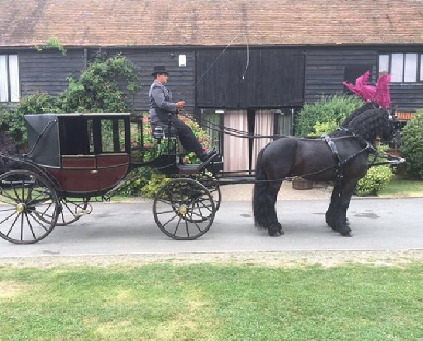 Horse and Carriage Hire